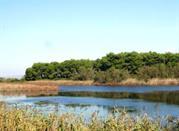 Lago Salinella - Ginosa