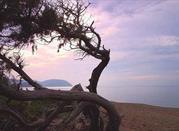 Spiaggia di Rimigliano - San Vincenzo