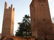Torre Mozza e Torre Donà - Rovigo