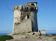 Torre Falcone - Stintino
