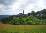 Torre di Denice - Denice