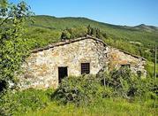 Castello di Montauto  - Cantagallo