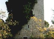 Torre Cappavecchia - Molfetta