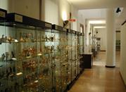 Museo della Ceramica dell' Istituto d' Arte