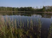 Parco naturale dei Lagoni di Mercurago - Arona