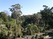 Orto Botanico - Portici