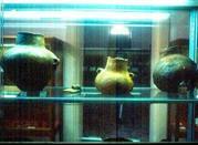 Museo Civico Paleontologico - Otranto