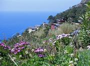 Bosco e Spiaggia del Villaggio la Francesca - Bonassola