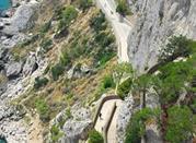 Giardini di Augusto - Capri