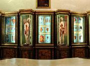 Museo dello Studio del Nono Centenario - Bologna