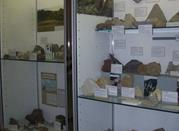 Civico Museo Naturalistico