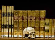Museo di Anatomia Umana - Napoli
