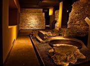 Museo Civico Archeologico e di Scienze Naturali