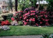 Giardino botanico di Villa Bricherasio - Saluzzo