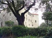 Castello di Podenzana - Podenzana