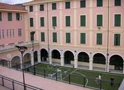Museo di Scienze Naturali Don Bosco - Alassio