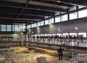 Museo Paleolitico - Isernia