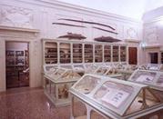Museo Aldovrandi - Bologna