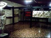 Museo Civico delle Scienze - Pordenone