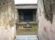 Casa della caccia antica - Pompei