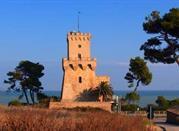 Torre Cerrano - Pineto