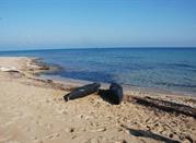 Spiaggia Torre Veneri - Lecce