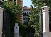 Palazzo Cavalli-Franchetti  - Venezia