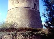 Torre Angioina - Atella
