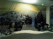 Museo Naturalistico - Champdepraz