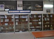 Museo Didattico Archeologico - Laterza