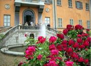 Orto Botanico - Pavia