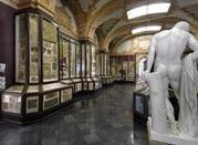 Museo Civico d'Arte - Modena