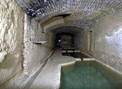 Fonte di Pescaia - Siena