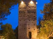 Le 2 Torri di Castellaro - Vendone
