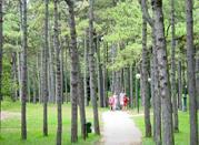 Parco Hemingway - Lignano Sabbiadoro