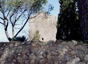 Torre di Lividonia - Monte Argentario