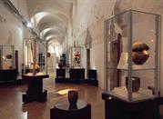 Museo dei Grandi Fiumi - Rovigo
