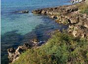 Riserva Naturale Marina di Torre Guaceto - Brindisi