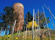Torre di Montaldo - Montaldo Roero