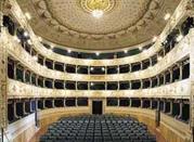 Teatro dei Rozzi - Siena