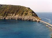 Spiaggia Isolotto di Vivara - Procida