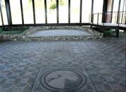 Villa Romana di Malvaccaro - Potenza