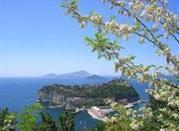 Parco Virgiliano - Napoli