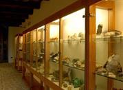 Museo dei Fossili e Minerali del Monte Nerone - Apecchio