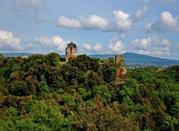 Torre di Castel d'Asso - Viterbo
