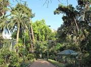 Orto Botanico Messina - Messina