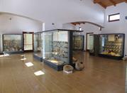 Museo Geopaleontologico dei Fossili della Lessinia - Velo Veronese