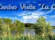 Oasi Riserva Lago di Montepulciano - Montepulciano