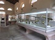 Museo Nazionale degli Strumenti per il Calcolo - Pisa