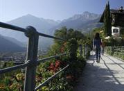 Passeggiata Tappeiner - Merano